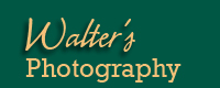 Photography and Printing Services - Schools, Sports, Weddings and More....